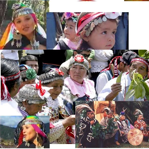 mapuçi kültürü