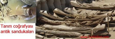Tarım coğrafyası antik sandukaları