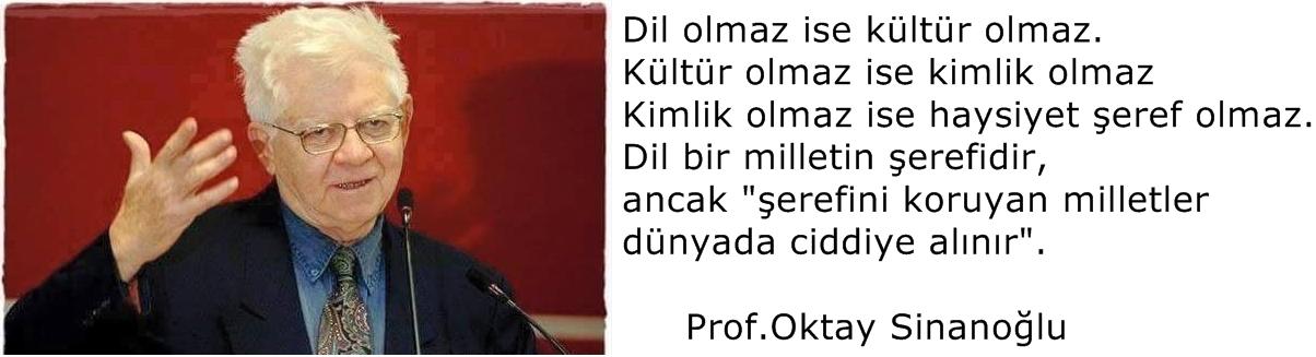Oktay Sinanoğlu Türk dili