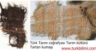 Urumçi Türk tarım tarihi coğrafyasında, Tartan kumaş kültürü Mö. 1500.