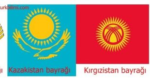Dağistan, Kazakistan, Kırgızistan ve Japon milletleri kültür bağı