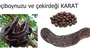Anadolu ticaret tarihinde bir tohumun ağırlık değeri Karat ve derde deva keçiboynuzu