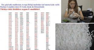 Elif Güngör Reis Türk mucidimizin buluşu, Yumurta Kabuğundan Doğal Antibakteriyel Eldesi